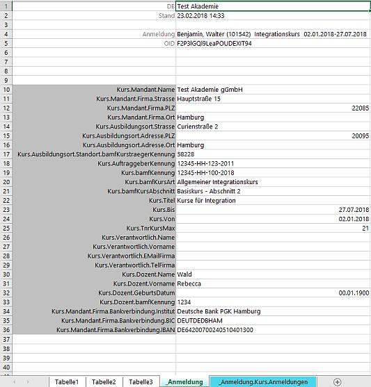 Excel-Vorlagen